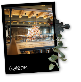 Galerie_Pola